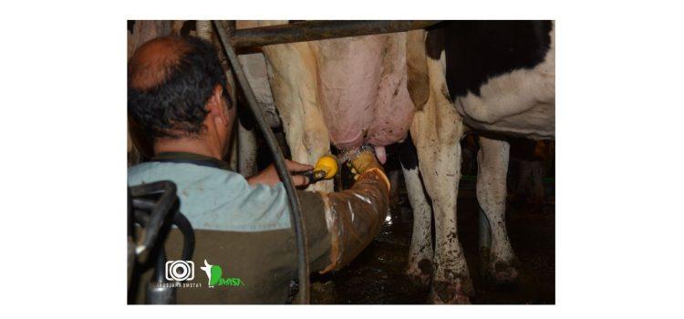 ورم پستان و بهداشت شیر4